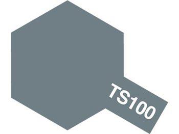 TAMIYA-TS100