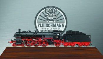 FLEISCHMANN-481270