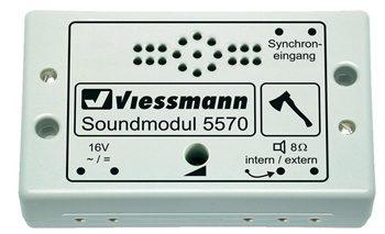 VIESSMANN-5570