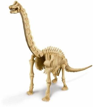 Brachiosaurus. Kit de excavación.