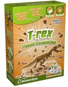 Excavaciones T-REX.