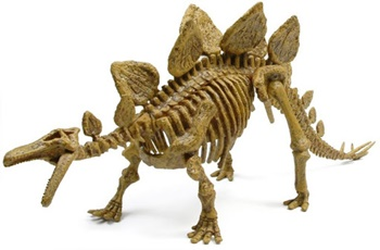 Stegosaurus. kit de excavación.