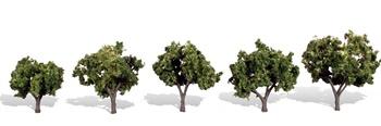Set de 5 arboles, escala HO-O-N.
